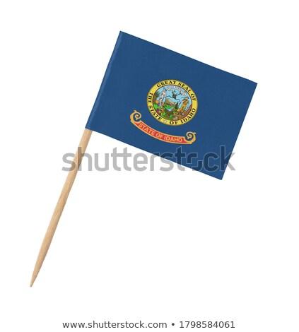 bandeira · Idaho · computador · gerado · ilustração · sedoso - foto stock © bosphorus