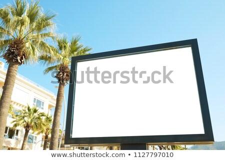 Billboard · grünen · Gras · Business · Gras · Hintergrund · Informationen - stock foto © lightsource
