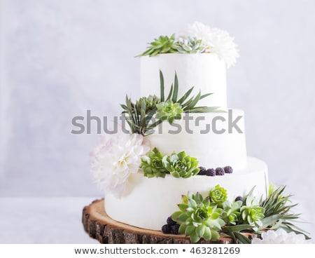 Stock fotó: Zöld · tea · torta · asztal · virág · vízszintes · fotó