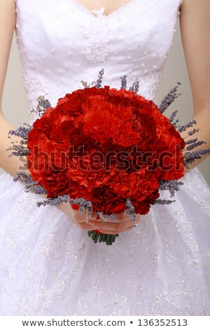 Donation. Compliment.Vernal Bouquet of Red Flowers in Woman's hands. Felicitation stock photo © gromovataya