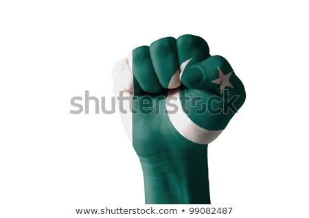 Fist Painted In Colors Of Pakistan Flag Foto stock © vepar5