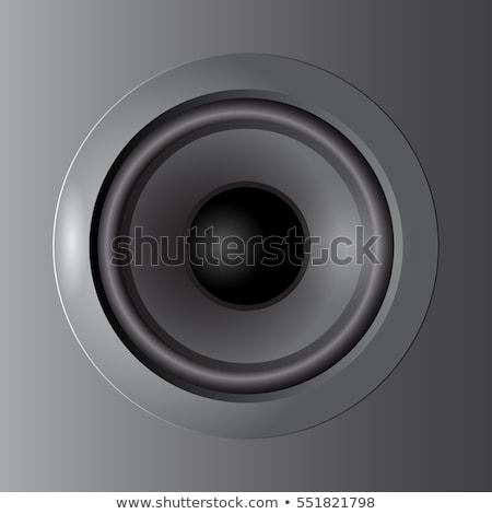 Speaker Cone Vector Stock photo © ArenaCreative