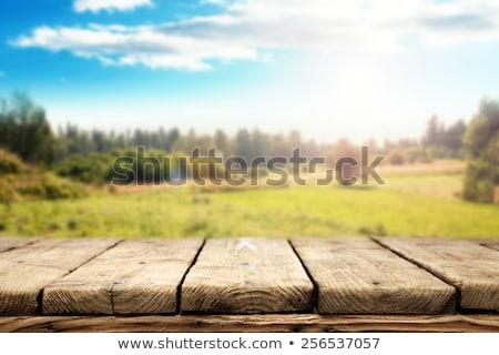 üres · asztal · felső · fa · asztal · naplemente · termék - stock fotó © hitdelight