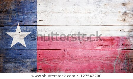 bandeira · Virgínia · grunge · textura · preciso - foto stock © asturianu