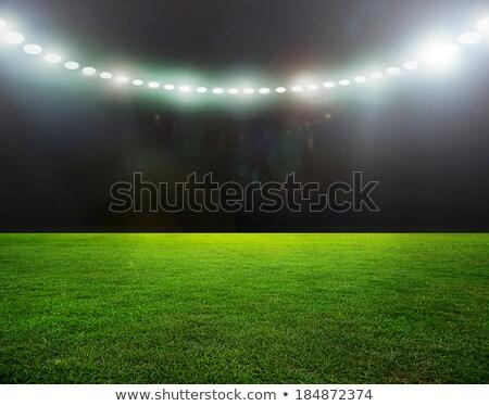 piłka · nożna · pozycje · zespołowej · strategii · ilustracja · gry - zdjęcia stock © burakowski