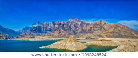 Tájkép Omán homok kövek bokrok szürke Stock fotó © w20er