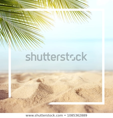 Absztrakt nyári szabadság tengerpart fa tenger madár Stock fotó © pathakdesigner
