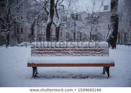 Park bench covered with snow Stock photo © bmonteny