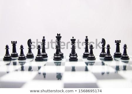 Satranç tahtası parçalar Metal eğitim satranç Stok fotoğraf © idesign