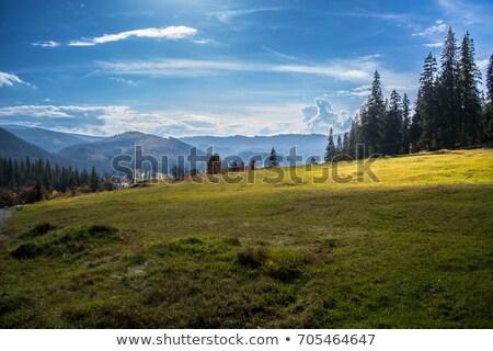 Mountain blue sky and cloud shadow Stock photo © tungphoto