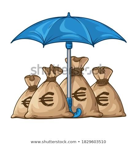 Esernyő pénz valuta dollár eps10 izolált Stock fotó © LoopAll