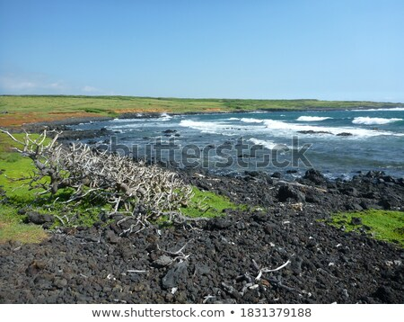 Tenger part egyenetlen kő tájkép vibráló Stock fotó © rekemp