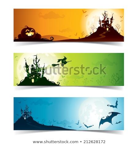 ingesteld · halloween · banners · verticaal · hemel · bloem - stockfoto © voysla