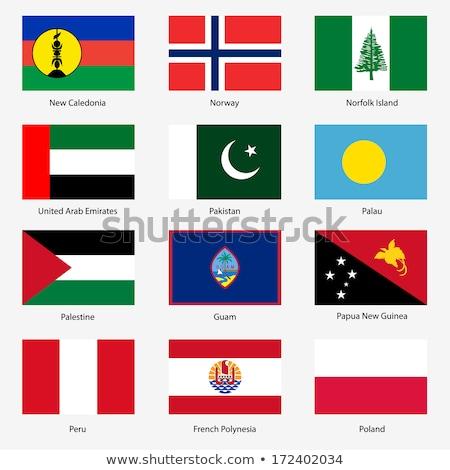 Объединенные Арабские Эмираты французский Полинезия флагами головоломки изолированный Сток-фото © Istanbul2009