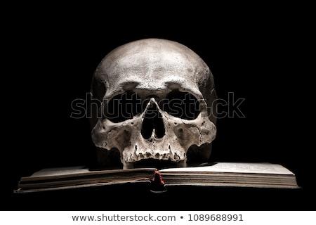 人間 · 頭蓋骨 · 古代 · 図書 · 静物 · キャンドル - ストックフォト © stokkete