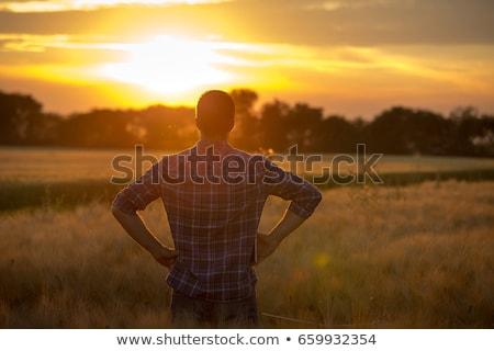 человека · закат · природного · пейзаж · силуэта · дерево - Сток-фото © elgusser