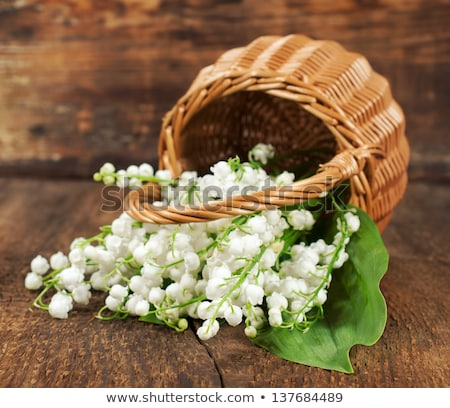Wicker Basket of flowers. Flower lily valley. Bouquet lily of valley Stock photo © orensila