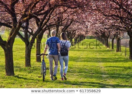 couple with bikes walking and holding hands stock photo © deandrobot