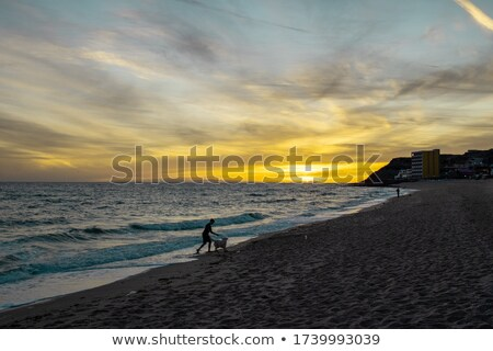 Foto d'archivio: Boy Fishing With His Dog At Sunset