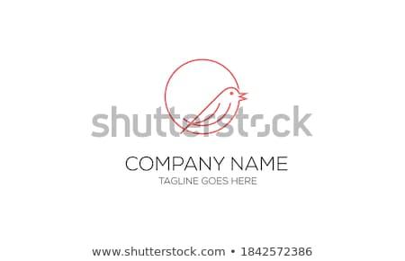 Mus vogel vergadering hout paal natuur Stockfoto © krash20