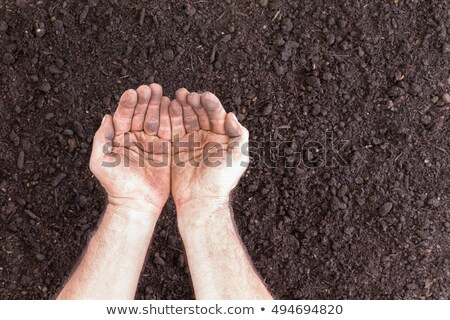 плодородный · почвы · грязные · мужчины · рук · человека - Сток-фото © ozgur