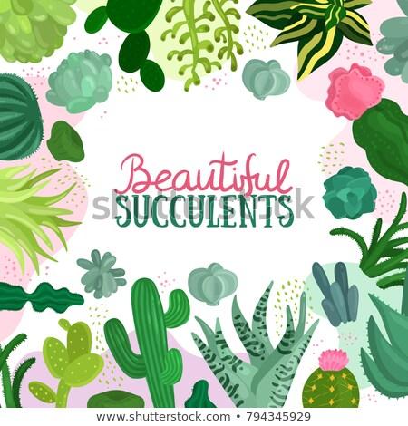различный · зеленые · листья · иллюстрация · фон · искусства · зеленый - Сток-фото © bluering