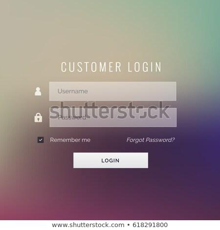 Klienta login formularza projektu nazwa użytkownika hasło Zdjęcia stock © SArts