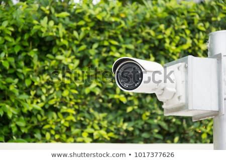 Cctv biztonsági kamera megfigyelés zöld park tevékenység Stock fotó © stevanovicigor