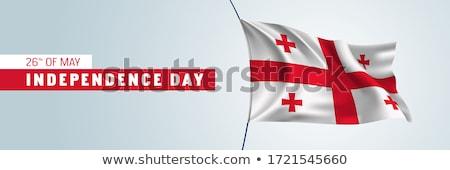 Georgië · vlag · ovaal · knop · metaal · geïsoleerd - stockfoto © oakozhan