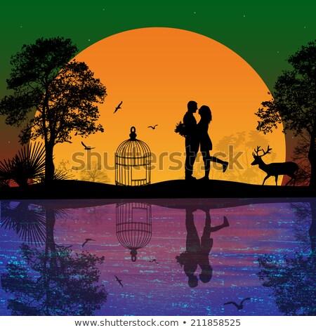 lovers kissing and bird cage at sunset Stock photo © adrenalina