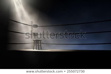 box · gyűrű · aréna · kötelek · fény · doboz - stock fotó © albund