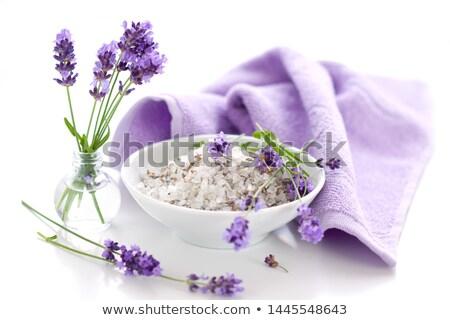 Flores lavanda flor textura Foto stock © All32