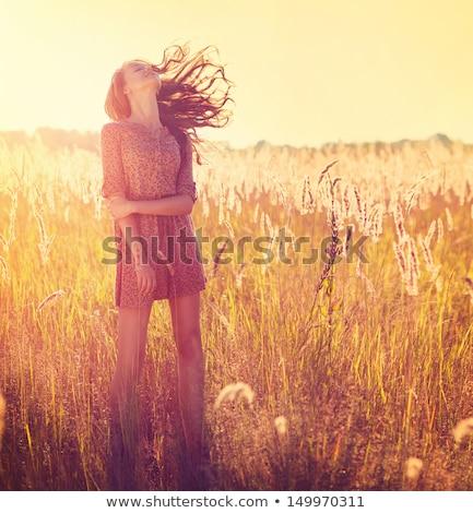 Jungen schöne Frau golden Weizenfeld tragen hat Stock foto © chesterf