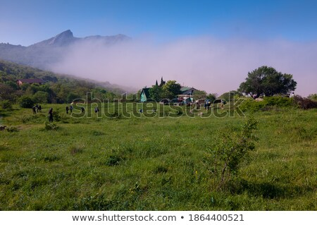 Beautiful daylight view to blue sea and green mountains in fog Stock photo © frimufilms