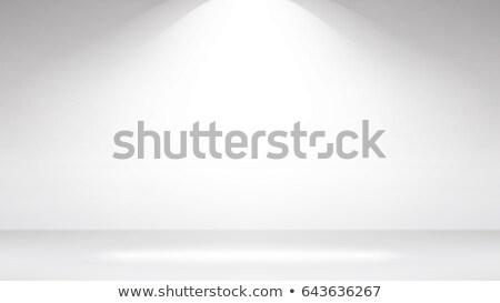 Empty White Photo Studio Interior Background. Clean Iight Interior Scene Mock Up. Vector Illustratio Stock photo © pikepicture