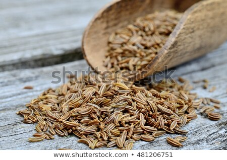 scoop of caraway seeds stock photo © digifoodstock