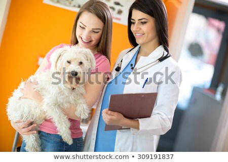 Woman vet and dogs owners smiling and holding a cute puppy Stock photo © wavebreak_media