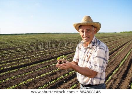 Supérieurs homme mains portrait Photo stock © wavebreak_media