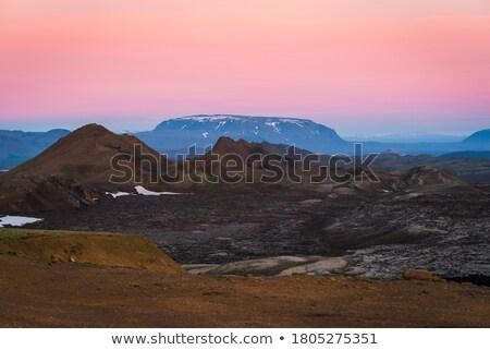 溶岩 フィールド アイスランド 風景 フィールド 苔 ストックフォト © Kotenko
