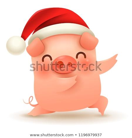 мало свинья Рождества красный Cap с Новым годом Сток-фото © ori-artiste