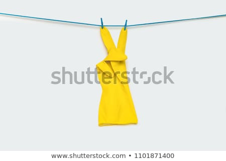 Clothespin letter V Stock photo © boggy