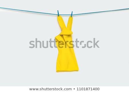 Prendedor de roupa carta isolado branco estilo Foto stock © boggy