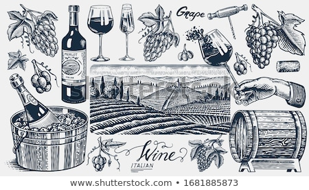 Grape and vintage corkscrew Stock photo © furmanphoto