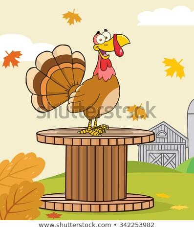 Boldog Törökország madár rajzfilmfigura óriás cséve Stock fotó © hittoon