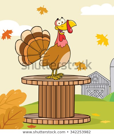 gelukkig · pelgrim · Turkije · vogel · cartoon · mascotte · karakter - stockfoto © hittoon