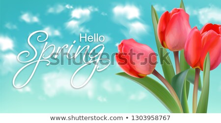 yellow tulip flowers on sky background vector realistic banner templates spring summer cards stock photo © frimufilms