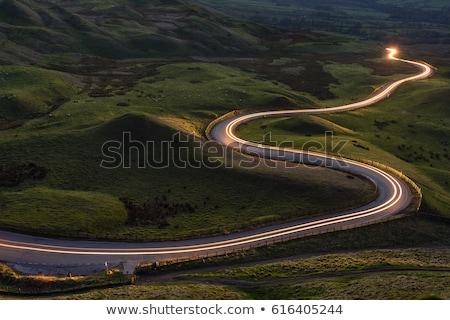 voorjaar · zomer · weg · berg · illustratie · cartoon - stockfoto © bluering