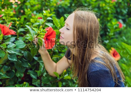 Young woman sniffing hibiscus in the park Stock photo © galitskaya