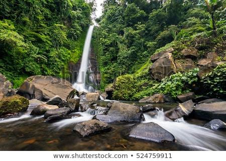 водопада Бали острове Индонезия мнение лес Сток-фото © boggy