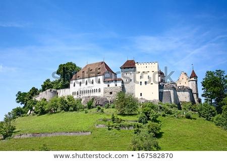 замок · Швейцария · старые · города · важный - Сток-фото © borisb17